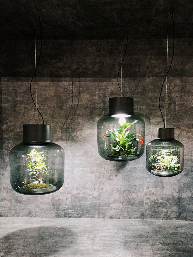 imm cologne: Urban Jungle mit der Lampe samt Pflanze