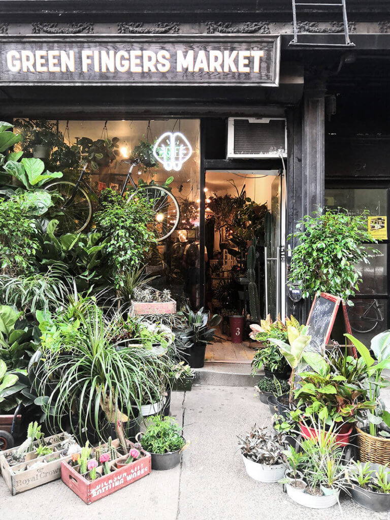 Pflanzen und Urban Jungle im Blumenladen in den New York Highlights